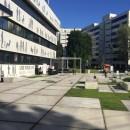 piastra pavimentazione giardino pubblico